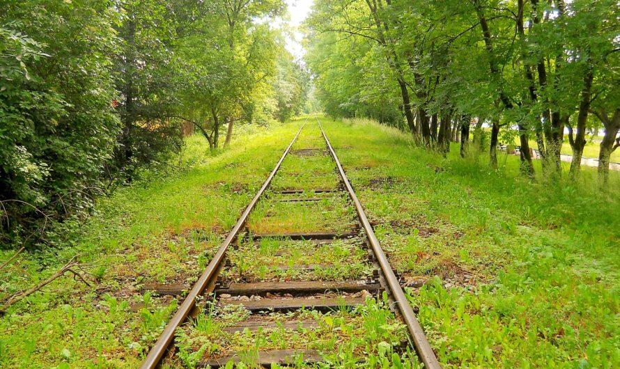Reaktivierung der Bahnstrecke Ahaus-Stadtlohn-Südlohn-Borken